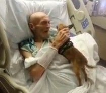 Dying Man Now 'Doing Better' After Hospital Reunites Him With His Dog