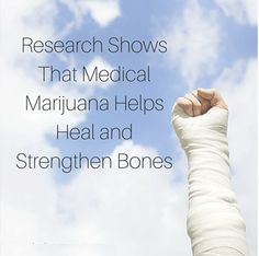 The study showed that Medical Marijuana caused the healed bones to be stronger than they were before the break!     #Cannabis  #PotValet #California  #LegalizeIt#LegalizeIt #Prop64 #LosAngeles #Election2016