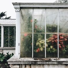 If you're wanting to feature a conservatory green-house for your home or office, this informative article provides you plenty of fulfilling thoughts on how to usher in mother nature. Plants Are Friends, Greenhouse Plans, Greenhouse Wedding, Plantation, Water Lilies, Scandinavian Style, Interior And Exterior, Planting Flowers, Greenery