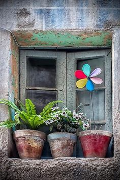 well worn little window with some potted plants and a happy, colorful pinwheel.