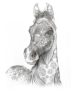 Adult Coloring Book Page, Beautiful Stallion For Adult Coloring To Download | Selah Works