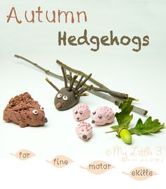 Make a Cute Autumn Hedgehog Family - A fun 3D Autumn craft for kids and a great way to develop fine motor skills.