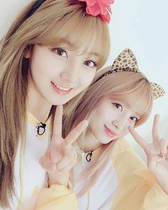 Jihyo & Momo   Twice