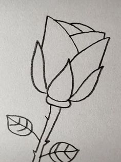 Rose Drawing Discover Drawing Rose Easy with A Pencil Easy Pencil Drawings, Space Drawings, Cute Easy Drawings, Art Drawings Sketches Simple, Art Drawings For Kids, Bird Drawings, Doodle Drawings, Drawing Ideas, Disney Drawings