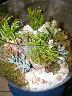 UVou fazer um igualn de nos jardins miniatures