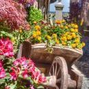 Decorar-o-seu-jardim-com-uma-carroça-e-flores-23