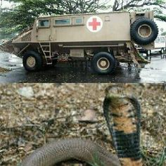War Machine, Military Vehicles, South Africa, Monster Trucks, African, Apartheid