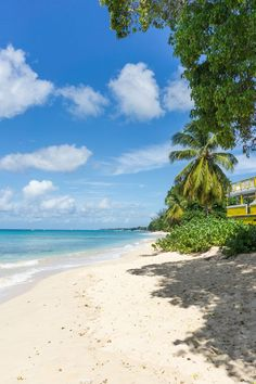 This detailed Barbados travel guide has all the info you need to plan a holiday on the island, including top things to do, restaurants, hotels and more. Trip To Barbados, Visit Barbados, Barbados Resorts, Punta Cana Vacations, Barbados Travel, Florida Hotels, Beach Travel, Dream Vacation Spots, Dream Vacations