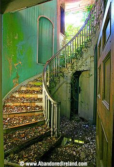 Once-lovely Foyer - Abandoned Ireland