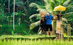 Bali Road Trip in 4K! - #onedayoffline   Devinsupertramp