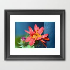 I must have flowers, always, and always. Framed Art Print by Laura George