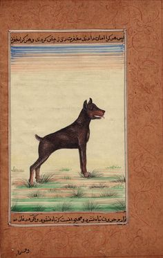 Indian Dog Miniature