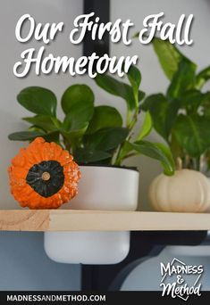 A peek into our house and the changes we've made since living here the past 6 months. It's our first fall and we're getting ready for winter! Outdoor Projects, 6 Months, Madness, House Design, Posts, Fall, Winter, Blog, Autumn