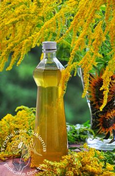 Solidago flower syrup, syrop z kwiatów nawłoci, Edible Flowers, Fruit Recipes, Geraniums, Syrup, Good To Know, Glass Vase, Water Bottle, Food And Drink, Herbs