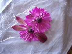 how to pound flowers, crafts, flowers, how to