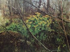 """""""Marsh Marigolds"""" limited edition lithograph"""