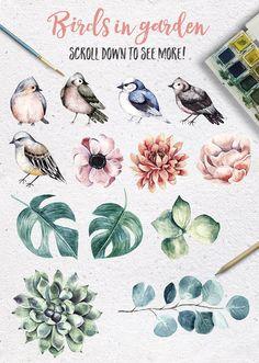 BIRDS IN GARDEN Watercolor clip art by Maria Sem Watercolors on @creativemarket