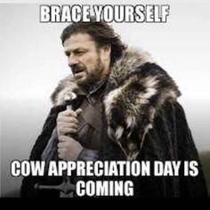 cow appreciation day meme