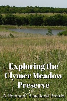The Clymer Meadow Preserve in north Texas is a remnant black land prairie boasting flowers and grasses that reflect the land as it existed 200 years ago.