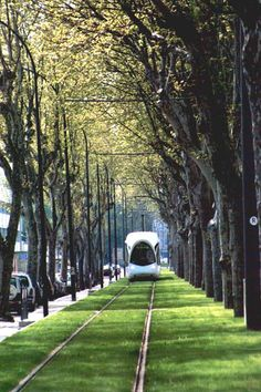 Lyon green transport corridor - isn't this just beautiful? Imagine if our Gautrain lines looked like this instead of all the fugly concrete... wow.