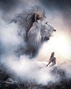 What is your favorite animal? Lion 💕 Photos by Lion Of Judah Jesus, Judah And The Lion, Lion And Lamb, Lion Images, Lion Pictures, Jesus Pictures, Images Of Lions, Pictures Images, Majestic Animals