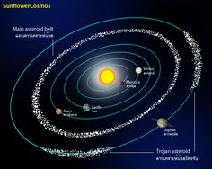 Read answer The Asteroid Belt is the region of interplanetary space between Mars and Jupiter where most asteroids are found. Description from beltts.net. I searched for this on bing.com/images