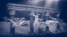 Among Sharks by Vítězslav Koneval