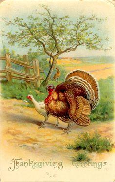 Vintage Thanksgiving Greetings