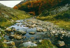 Hacer trekking rumbo al Cajón Negro. Y encontrarse con este Arroyo Piedritas en el camino.  (Foto por: macarlos48 en Viajeros.com)