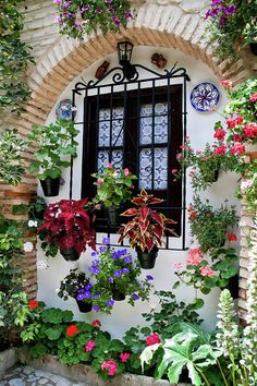 Patio Festival Art Print by Barbara Kyne. All prints are professionally printed, packaged, and shipped within 3 - 4 business days. Choose from multiple sizes and hundreds of frame and mat options. Garden Cottage, Home And Garden, Beautiful Gardens, Beautiful Flowers, Beautiful Places, Living Fence, Balcony Garden, Garden Inspiration, Container Gardening
