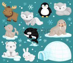 cute penguin: Arctic Animal Vector Set