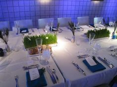 so no, I don't want grass on the tables - but I like how everything on the tables is white except for the blue napkin and the green in the centerpiece.