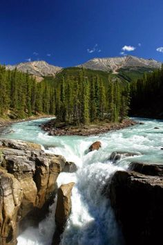✿ ❤ Sunwapta Falls is a waterfall of the Sunwapta River located in Jasper National Park, Canada.