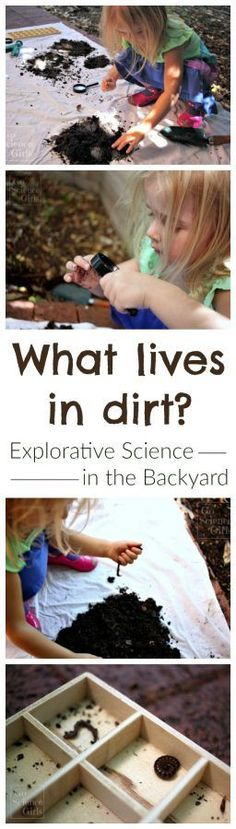 Great hands on science for zoology! What lives in dirt? Sensory play meets explorative science in the backyard. Nature Activities, Outdoor Activities For Kids, Outdoor Learning, Science Activities, Spring Activities, Science Experiments For Preschoolers, Preschool Science, Science For Kids, Science And Nature