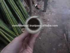 Vietnam Bamboo/ natural dry Bamboo, View Bamboo for construction, Rom Viet Product Details from ROM VIET COMPANY LIMITED on Alibaba.com Bamboo Roof, Vietnam, Construction, Detail, Natural, Building, Nature, Au Natural
