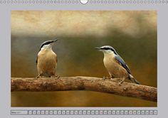 Heimische Wildvögel kunstvoll präsentiert - CALVENDO