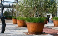 Bart Hoes - ontwerpburo voor tuin en landschap