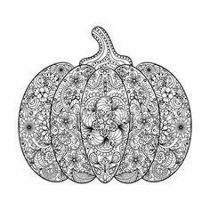 Vector Pumpkin illustration, Hand drawn vegetable in zentangle s — Vector de stock