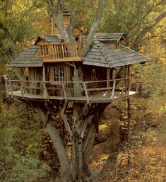 From simple tree house plans for kids to the big ones for adult that you can live in. If you're looking for tree house design ideas. Find and save ideas about Tree house designs. Beautiful Tree Houses, Cool Tree Houses, Beautiful Homes, Beautiful Places, Magic Garden, Garden Cottage, In The Tree, Big Tree, Play Houses