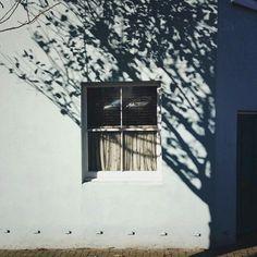 lauren maccabee, 22 london/manchester photographer website ask box Photo Instagram, Instagram Posts, Shadow Play, Shadow Tree, Window Shadow, Windows, Light Photography, Rustic Photography, House Photography