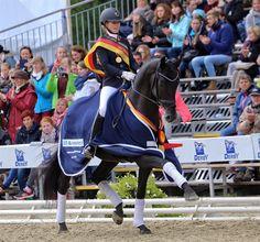 Fürsten-Look - hphorses.dk