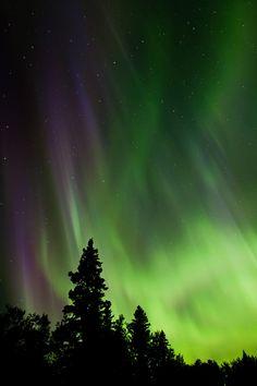 Auroras boreales desde Deep Bay, Clear Lake, Manitoba, Canadá. 15 de julio de 2013 Crédito: Warren Justice