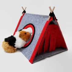 Guinea pig bedding is a vital element on how they have a comfy existence. What they nap on, and use as a lavatory, might decide on just how healthy they'll be over time. Maintain the guinea pig home, and they're going to have a nice completely happy and entertaining life.