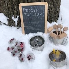 Tinkergarten – Outdoor Classes, Activities for Kids – Natural Playground İdeas Winter Outdoor Activities, Snow Activities, Educational Activities For Kids, Nature Activities, Preschool Activities, Outdoor Education, Outdoor Learning, Outdoor Play, Outdoor School