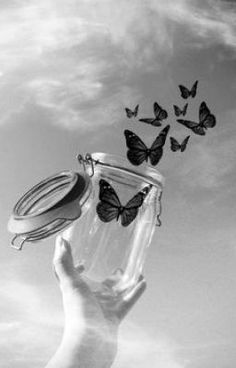 Butterfly coming out of the glass ♥- Borboleta saindo do vidro♥ Butterfly coming out of the glass ♥ - Gray Aesthetic, Black Aesthetic Wallpaper, Grey Wallpaper, Black And White Aesthetic, Butterfly Black And White, Black And White Picture Wall, Black And White Pictures, Cool Wallpapers Black And White, Black And White Wallpaper Phone