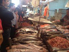 Santiago Shrimp, Meat, Santiago, Patagonia