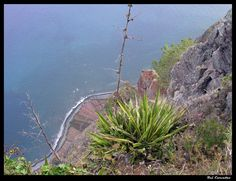 Viewpoint Cape Girao (Cabo Girão) - 580 m high - Viewpoint Cape Girao - Find cheap hotels and holiday cottages, nature and rural houses, discounts and the right opportunities to visit the Madeira
