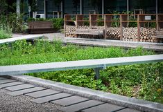 The_Physic_Garden_Novartis_Campus-by-Thorbjörn_Andersson-with-Sweco_architects-03 « Landscape Architecture Works | Landezine Landscape Archi...