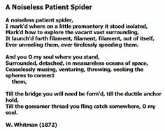 A noiseless patient spider essay
