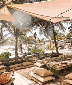 Hotels in tulum mexico, best resorts, tulum mexico resorts, tulum restauran Tulum Hotels, Tulum Mexico Resorts, Tulum Restaurants, Backyard, Patio, Beach Bars, Bungalows, Mexico Travel, Culture Travel